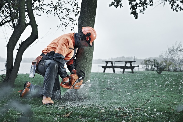 Man using Husqvarna 545 chainsaw